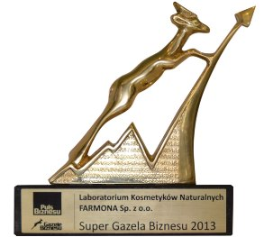 super-gazela-biznesu-20133.jpg